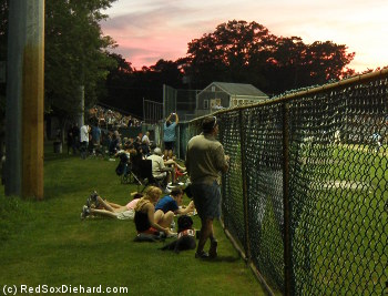 Fans and their dogs spread out down the right field line to watch the game at Harwich's Whitehouse Field.