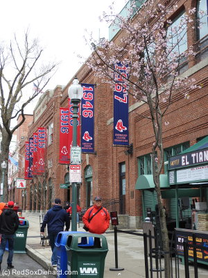 Obligatory Opening Day shot from Yawkey Way. Nice to see some flowers and buds on the trees!